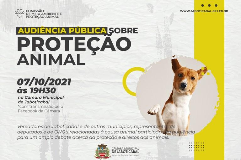Proteção animal é tema de audiência pública na Câmara Municipal de Jaboticabal no dia 07 de outubro